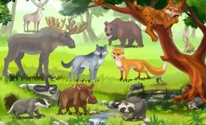 загадки про животных с ответами