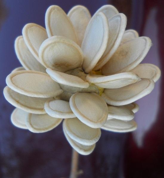 поделки из семян тыквы