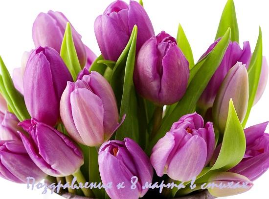 поздравления к 8 марта в стихах