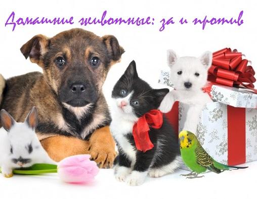 домашние животные за и против