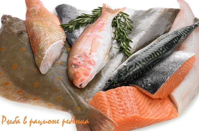 какую рыбу лучше давать детям