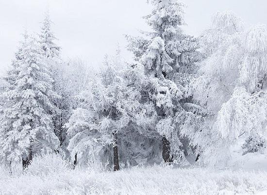 загадки про снег