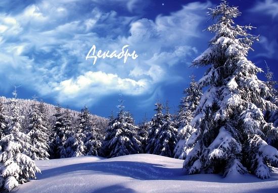 стихи про декабрь