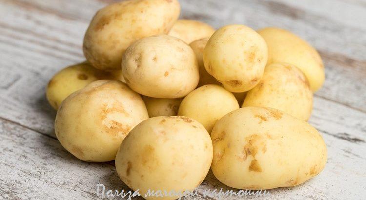 польза молодого картофеля