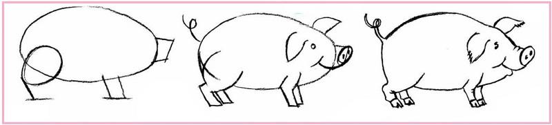 как нарисовать свинку