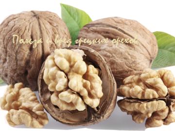 польза грецких орехов для организма