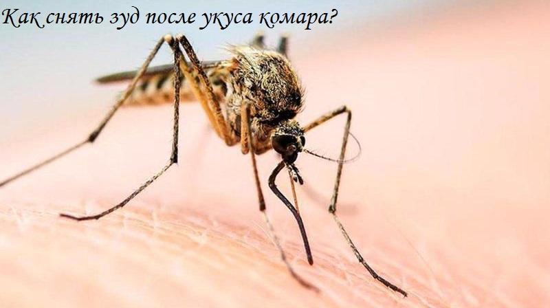 как избавиться от зуда после укуса комара