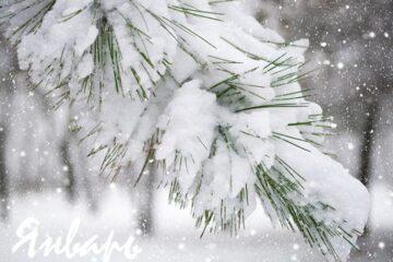 Стихи для детей про зиму: стихи про январь